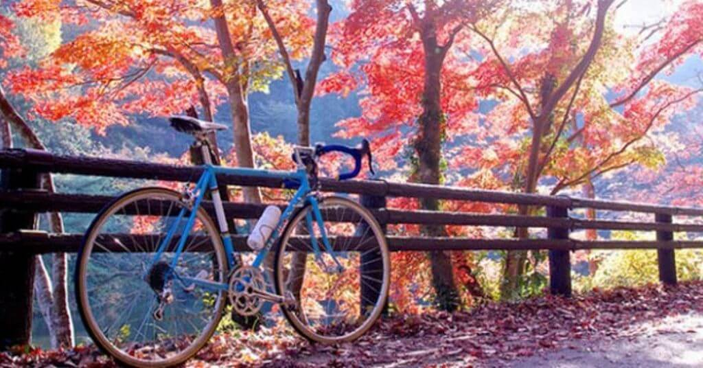 KBC Forest Foliage in the Fall Ride